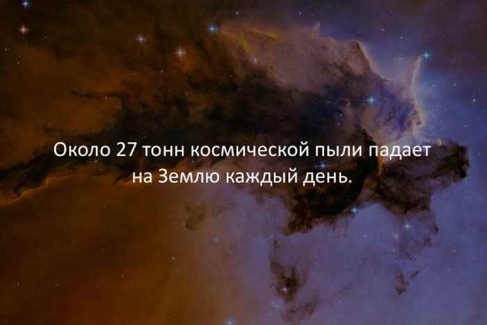 1126af0702.jpg