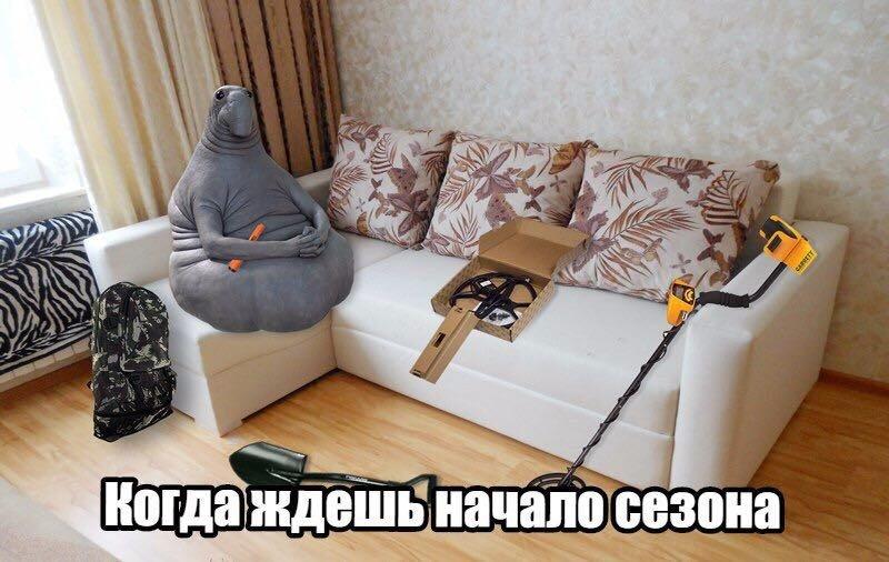 photo_1488619793.jpg