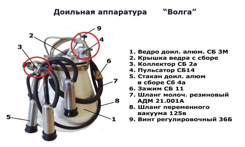 image-0-850.jpg