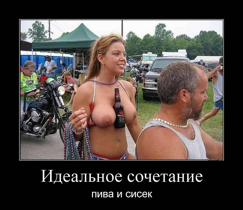 cr_932036458434259327222.jpg