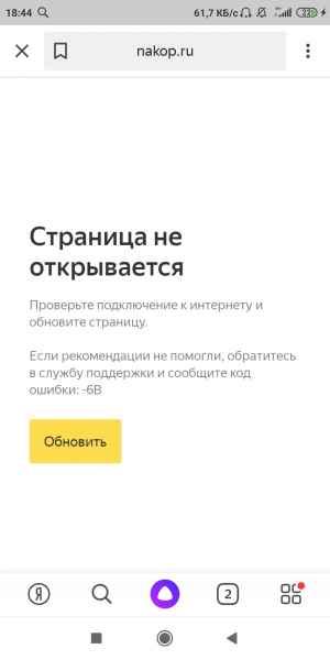 Screenshot_2020-04-08-18-44-31-462_ru.yandex.searchplugin.jpg