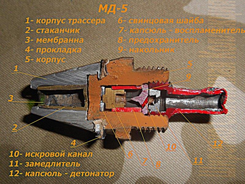 мд-5-разрез.jpg